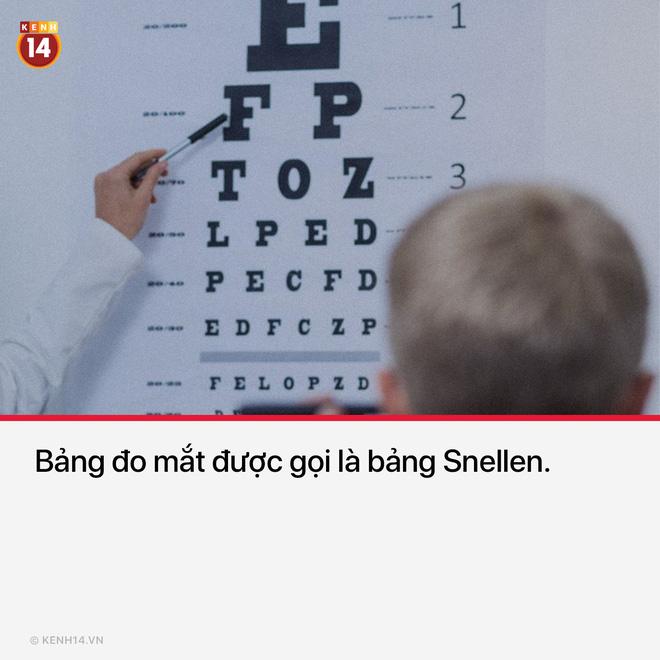 Mình cứ tưởng nó là bảng đo mắt thôi...