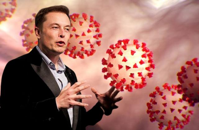 Elon Musk lọt vào danh sách theo dõi đặc biệt của Nhà Trắng về vấn đề COVID-19 - Ảnh 3.