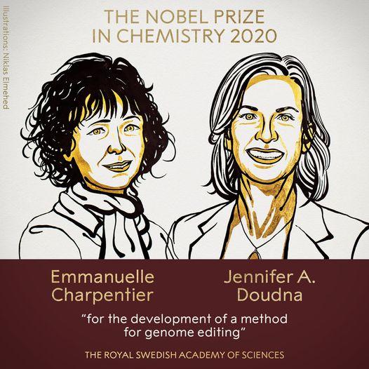 Nobel Hóa học 2020 gọi tên hai nữ khoa học gia phát minh công nghệ chỉnh sửa gen CRISPR/Cas9 - Ảnh 1.