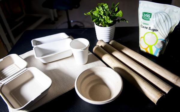 Cửa sáng cho việc bảo vệ môi trường: Hộp đựng thực phẩm làm từ tre và bã mía sẽ phân hủy sinh học trong 60 ngày - Ảnh 1.