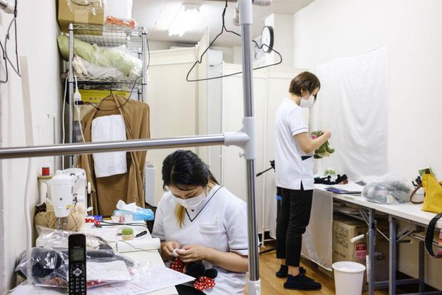 Độc lạ phòng khám chữa bệnh cho ... thú nhồi bông ở Nhật, viện phí có thể lên đến 111 triệu - Ảnh 1.
