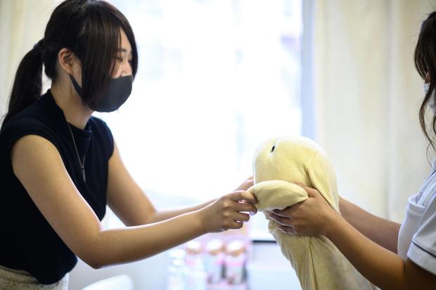 Độc lạ phòng khám chữa bệnh cho ... thú nhồi bông ở Nhật, viện phí có thể lên đến 111 triệu - Ảnh 3.