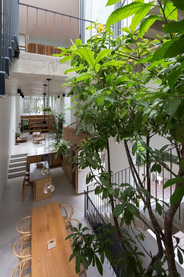 Nhà ống Hà Nội với thiết kế có một không hai, nhẵn mặt mọi tạp chí kiến trúc lớn nhỏ trên thế giới - Ảnh 12.