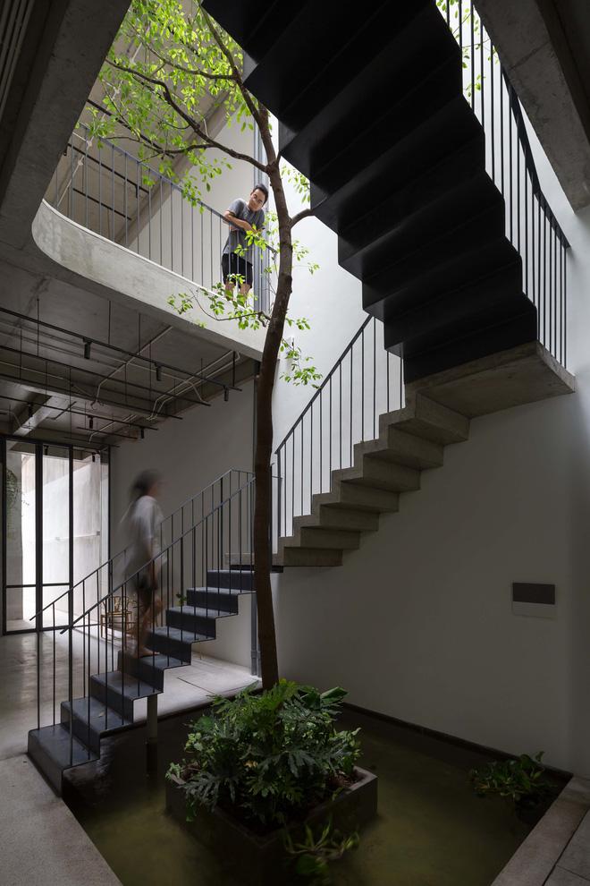 Nhà ống Hà Nội với thiết kế có một không hai, nhẵn mặt mọi tạp chí kiến trúc lớn nhỏ trên thế giới - Ảnh 8.