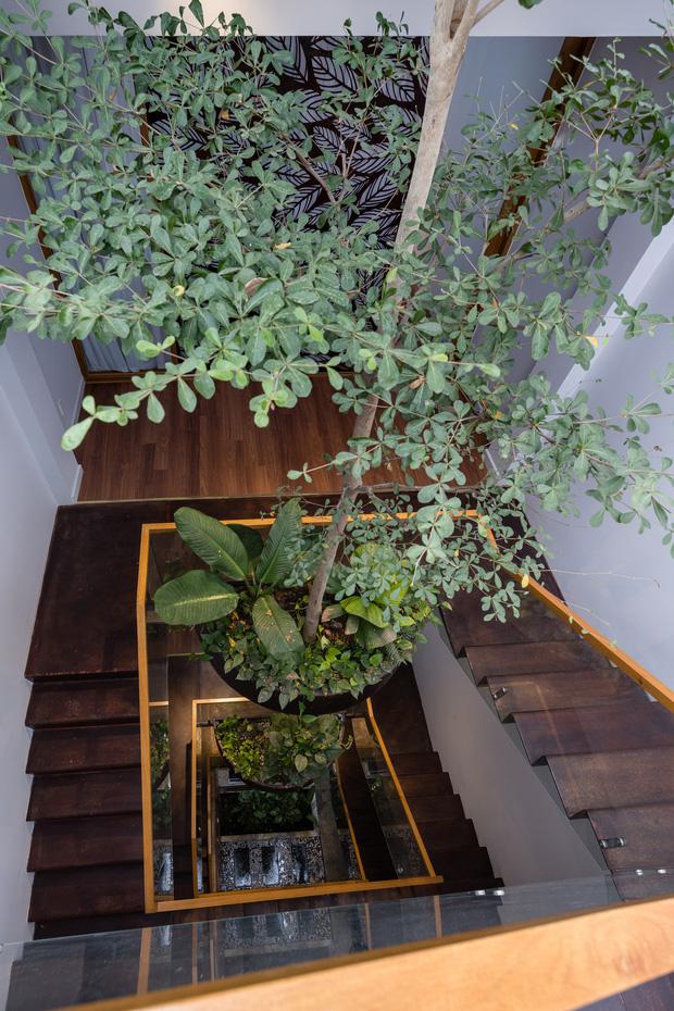 Nhà tổ chim với thiết kế phá vỡ mọi quy tắc: Không có tường ngăn, nhìn đâu cũng thấy cây xanh với khoảnh trống - Ảnh 7.