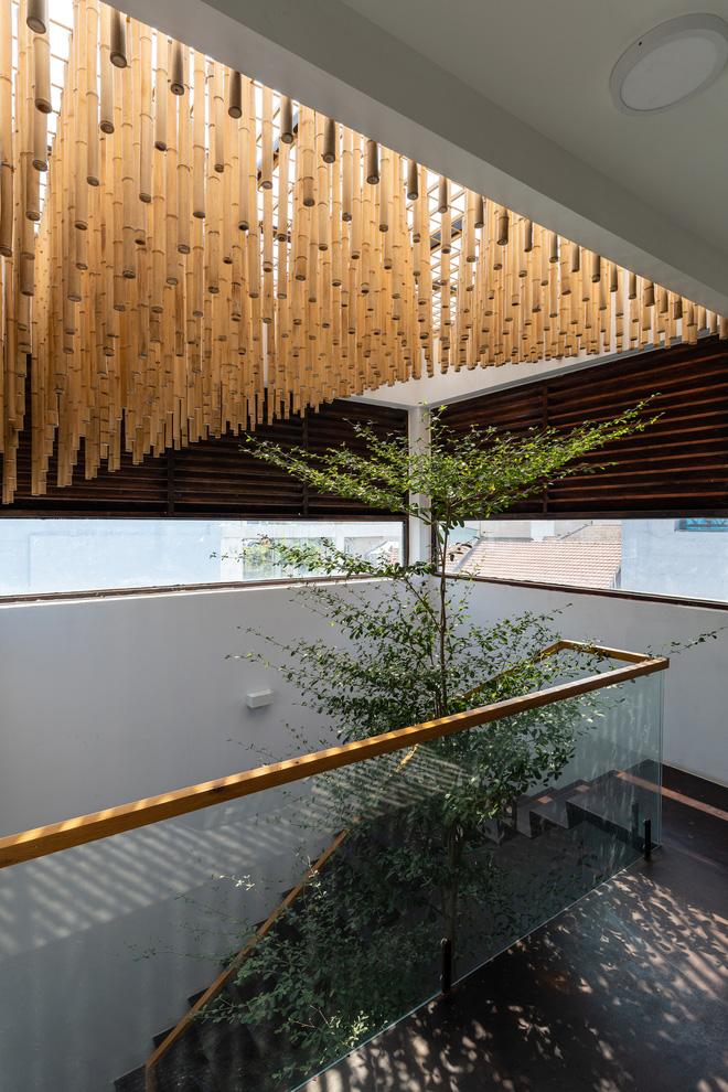 Nhà tổ chim với thiết kế phá vỡ mọi quy tắc: Không có tường ngăn, nhìn đâu cũng thấy cây xanh với khoảnh trống - Ảnh 8.