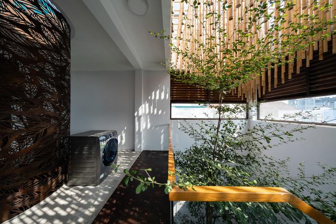 Nhà tổ chim với thiết kế phá vỡ mọi quy tắc: Không có tường ngăn, nhìn đâu cũng thấy cây xanh với khoảnh trống - Ảnh 9.