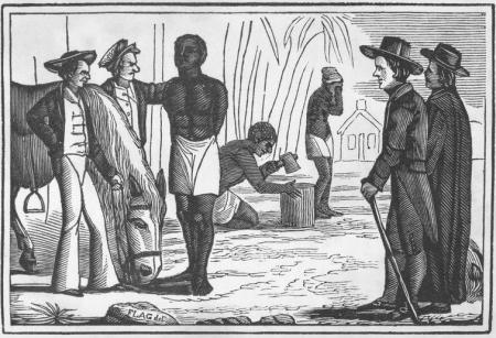 Chuyện về người nô lệ da đen đầu tiên dạy cả nước Mỹ tiêm chủng vắc-xin - Ảnh 2.