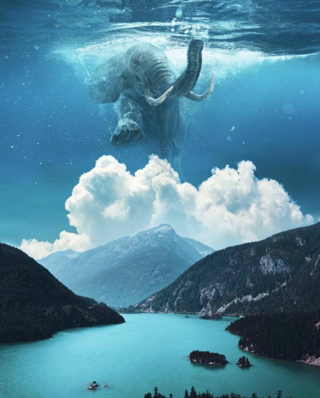 Câu chuyện của nhiếp ảnh gia phía sau bức ảnh ảo diệu được chọn làm màn hình chờ của Photoshop 2021 - Ảnh 7.