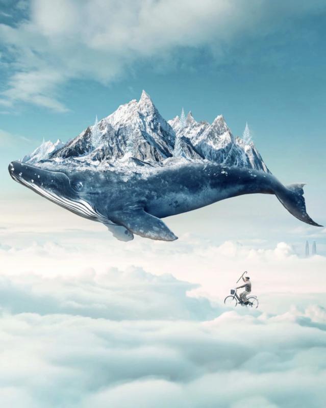 Câu chuyện của nhiếp ảnh gia phía sau bức ảnh ảo diệu được chọn làm màn hình chờ của Photoshop 2021 - Ảnh 16.