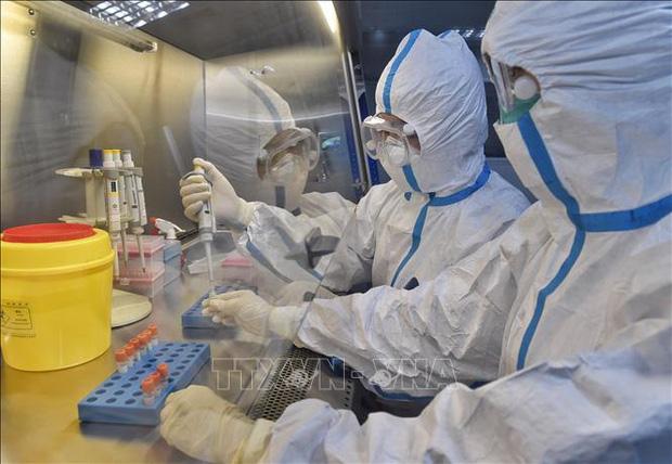 Xét nghiệm các mẫu bệnh phẩm tại phòng thí nghiệm ở tỉnh Tứ Xuyên, Trung Quốc, ngày 15/2. Ảnh: THX/TTXVN