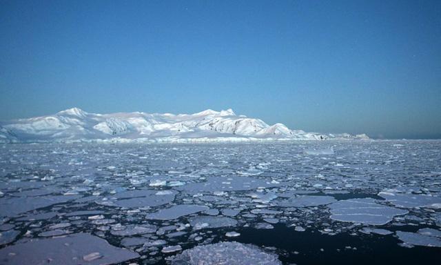 Dịch viêm phổi bùng phát, Nam Cực nóng 20 độ, 400 tỷ con châu chấu xâm lược: Trái Đất của chúng ta hiện tại có đang ổn không? - Ảnh 2.