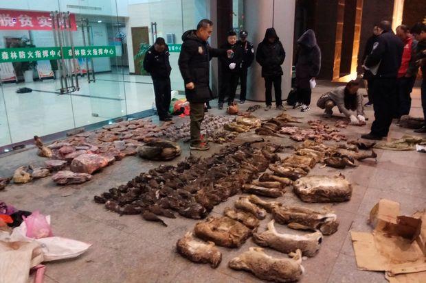 Trung Quốc đang nỗ lực xóa bỏ những khu chợ ẩm ướt để hạn chế tối đa dịch bệnh như thế nào? - Ảnh 19.