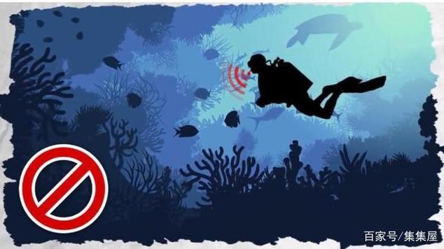 Huýt sáo dưới nước là phạm pháp, cắn chó lại hợp pháp và loạt quy định kỳ quặc chỉ có ở Mỹ - Ảnh 1.