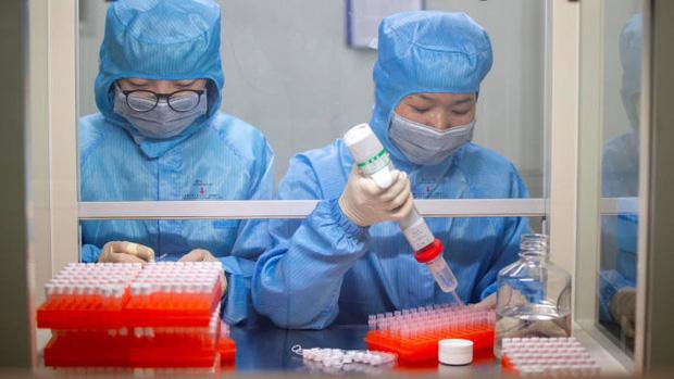 Đột phá kinh ngạc giữa bão virus corona: Khoa học Anh rút ngắn một công đoạn phát triển vaccine, từ 2 - 3 năm chỉ còn VÀI NGÀY - Ảnh 1.