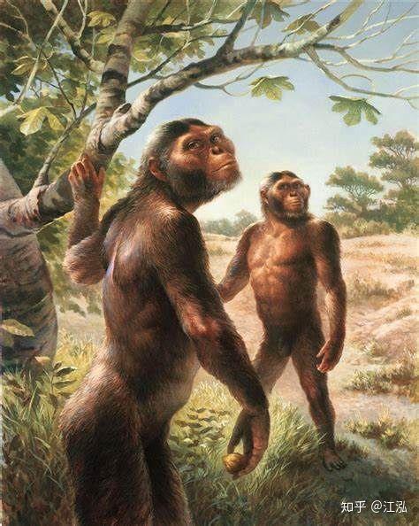 Tổ tiên của loài người đã từng gây ra sự tuyệt chủng của động vật từ 4 triệu năm về trước - Ảnh 4.