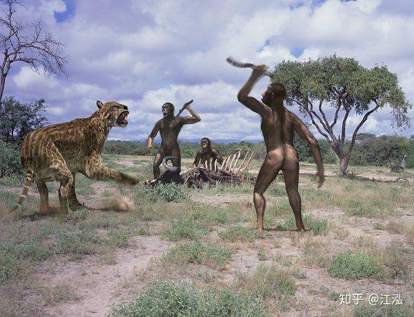Tổ tiên của loài người đã từng gây ra sự tuyệt chủng của động vật từ 4 triệu năm về trước - Ảnh 7.
