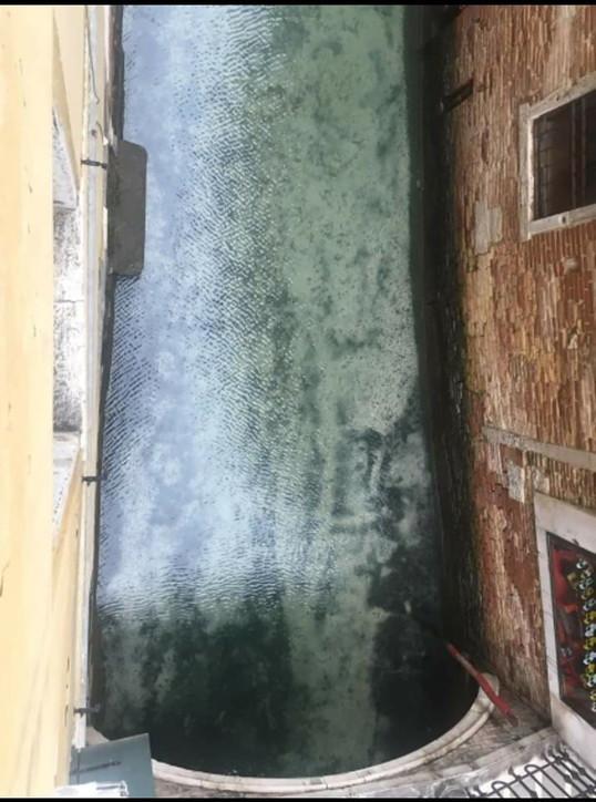 Chỉ sau vài ngày bị phong tỏa, các con kênh tại Venice trở nên trong như pha lê - Ảnh 2.