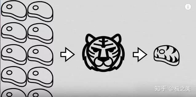 Tại sao nhân loại không thuần hóa hổ hay sư tử để làm gia súc hay thú cưỡi? - Ảnh 6.