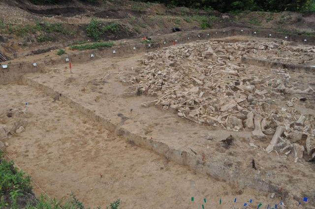 Người tiền sử xây nhà sống qua Kỷ băng hà từ xương quái thú khổng lồ đã bị tuyệt chủng? - Ảnh 1.