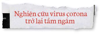 Lịch sử bí ẩn của họ virus corona: Từ cơn cảm lạnh thông thường đến những đại dịch toàn cầu - Ảnh 7.
