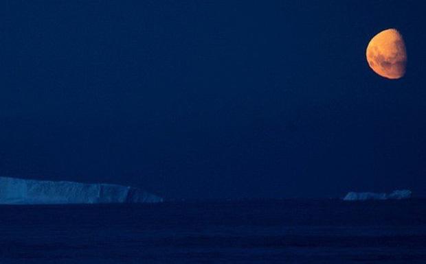Các tảng băng gần Vịnh Faurnier, Nam cực (ảnh: Reuters)