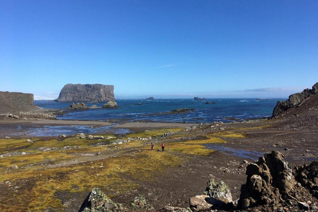 Nam Cực hiện là châu lục duy nhất chưa có người bị nhiễm COVID-19 (ảnh: getty)