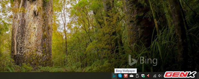 Microsoft phát hành ứng dụng Bing Wallpaper với kho ảnh nền khổng lồ dành cho Windows 10 - Ảnh 6.