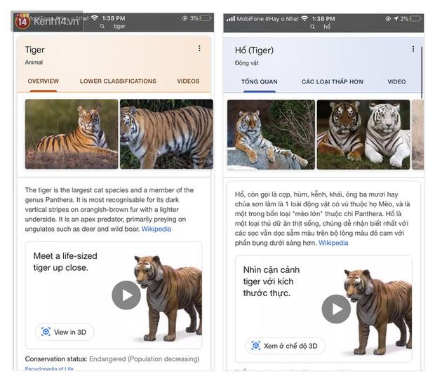 Cư dân mạng phát cuồng với trò ngắm nghía pet ảo của Google: Nằm nhà chơi cùng hổ, báo và bé Na dễ như bỡn - Ảnh 1.