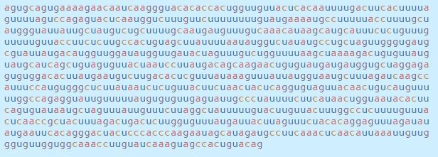 Chi tiết bộ gen SARS-CoV-2: Những tên khủng bố chiếm dụng tế bào phổi người - Ảnh 17.
