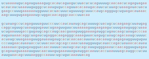 Chi tiết bộ gen SARS-CoV-2: Những tên khủng bố chiếm dụng tế bào phổi người - Ảnh 20.