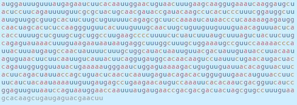 Chi tiết bộ gen SARS-CoV-2: Những tên khủng bố chiếm dụng tế bào phổi người - Ảnh 41.