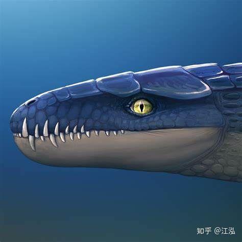 Cá sấu tiền sử dưới đại dương chỉ cần một cú đớp cũng có thể làm thủng bụng ngư long - Ảnh 6.