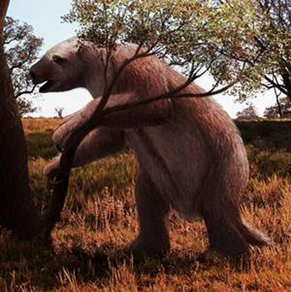 Chuyện thật như đùa, loài động vật tiền sử bị chết vì chính phân của mình - Ảnh 3.