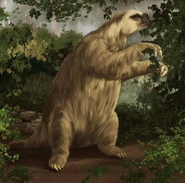 Chuyện thật như đùa, loài động vật tiền sử bị chết vì chính phân của mình - Ảnh 4.