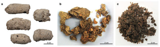 Đây là cách nhận biết một cục phân 7.000 năm tuổi là của chó hay người - Ảnh 2.