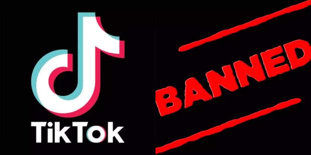 Dù đang là ứng dụng must-have của giới trẻ toàn cầu, TikTok lại vừa bị cấm tại Ấn Độ - Ảnh 4.