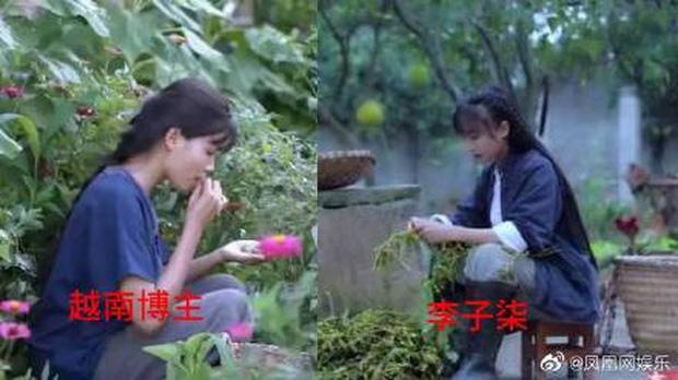 """Nghi vấn một kênh Youtube Việt Nam """"đạo nhái"""" Lý Tử Thất bị netizen Trung Quốc lên án gay gắt, lọt hẳn top 1 tìm kiếm weibo - Ảnh 5."""