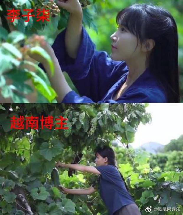 """Nghi vấn một kênh Youtube Việt Nam """"đạo nhái"""" Lý Tử Thất bị netizen Trung Quốc lên án gay gắt, lọt hẳn top 1 tìm kiếm weibo - Ảnh 6."""