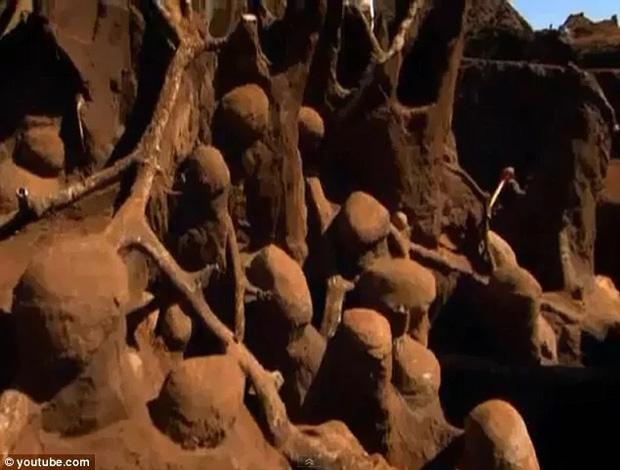 Đổ 10 tấn xi măng xuống tổ kiến dưới lòng đất, nhà khoa học không thể tin vào mắt mình khi khám phá ra thành phố khổng lồ - Ảnh 4.