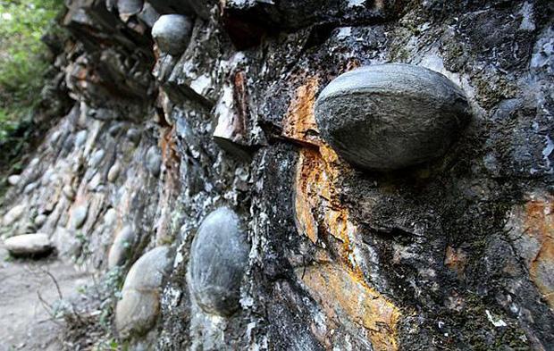 Vách đá kỳ quái cứ 30 năm lại đẻ trứng một lần, các nhà khoa học đau đầu đi tìm lời giải đáp - Ảnh 2.