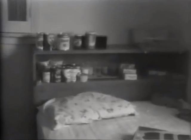 Genie phát triển niềm đam mê với các vật phẩm như chai lọ và hộp đựng - hành vi này được thể hiện ở nhiều trẻ em bị lạm dụng nghiêm trọng khác.