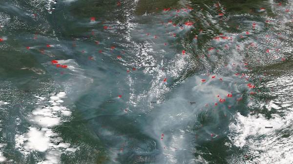 Ảnh vệ tinh cho thấy cháy rừng ở Siberia đang cháy.