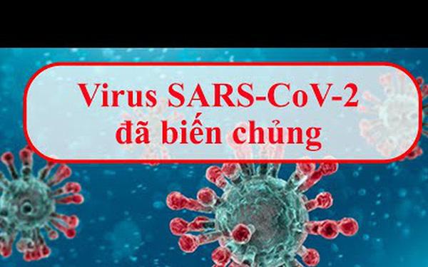 Biến chủng của virus Sars-Cov-2 ở Đà Nẵng có bất thường không? - Ảnh 1.
