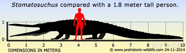 Stomatosuchus inermis: Loài cá sấu cổ đại có thể nuốt chửng cả thế giới - Ảnh 9.
