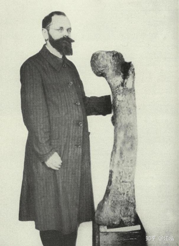 Stomatosuchus inermis: Loài cá sấu cổ đại có thể nuốt chửng cả thế giới - Ảnh 2.
