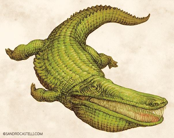 Stomatosuchus inermis: Loài cá sấu cổ đại có thể nuốt chửng cả thế giới - Ảnh 10.