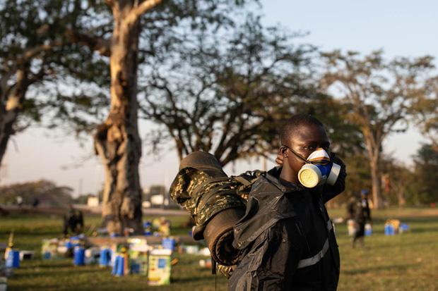 Chùm ảnh rợn người về đại dịch châu chấu đang hoành hành ở châu Phi: Binh đoàn nghìn tỷ con châu chấu với sức ăn bằng 35.000 người/ngày bay kín trời - Ảnh 4.