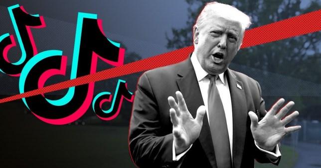 Tổng thống Trump tuyên bố Mỹ sẽ chính thức cấm TikTok từ ngày hôm nay - Ảnh 1.
