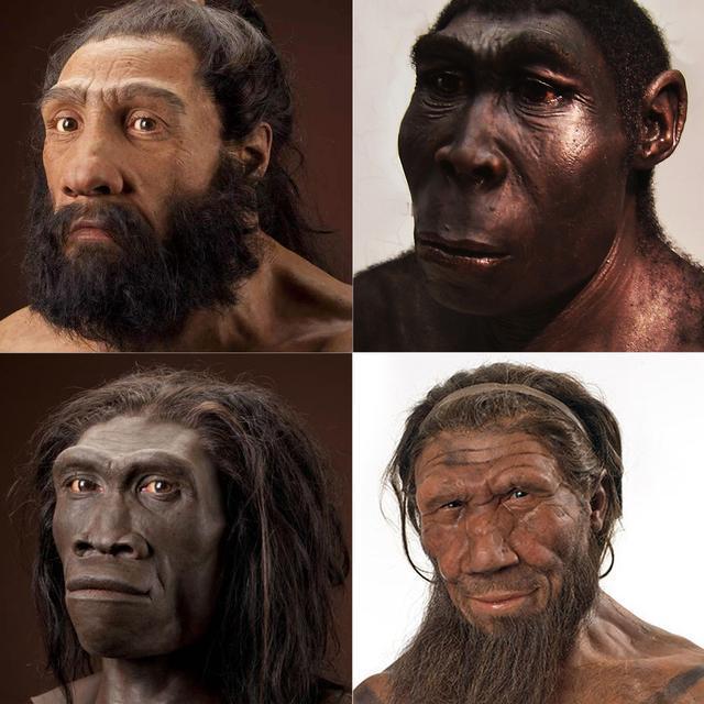Tại sao loài khủng long đã thống trị Trái Đất hơn 100 triệu năm lại không sinh ra trí tuệ như loài người? - Ảnh 8.